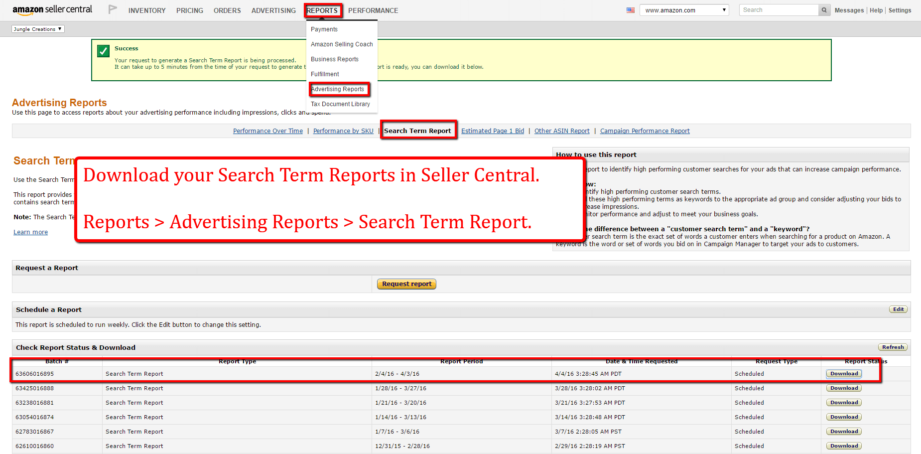 search_term_report