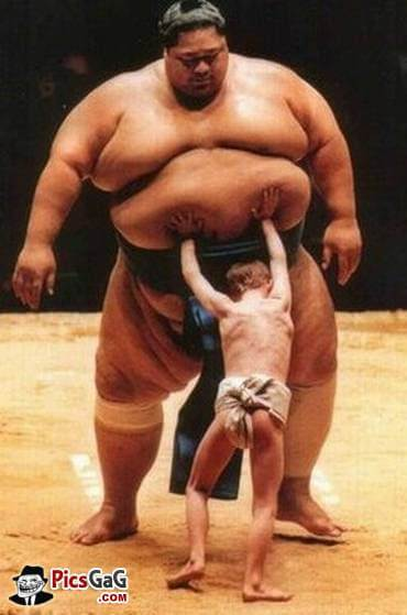 sumo-wrestler-funny-fights