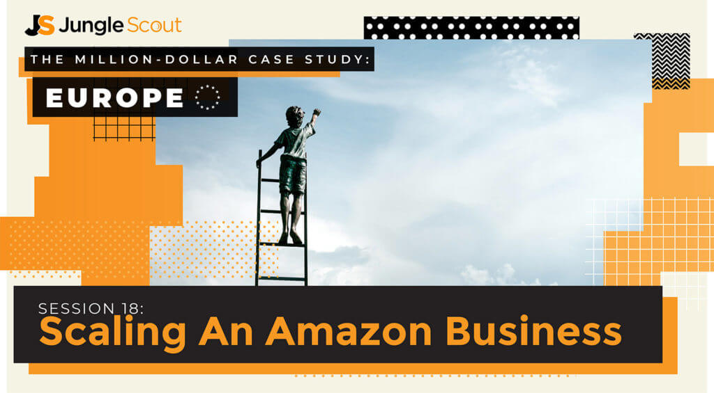 Scaling an amazon business
