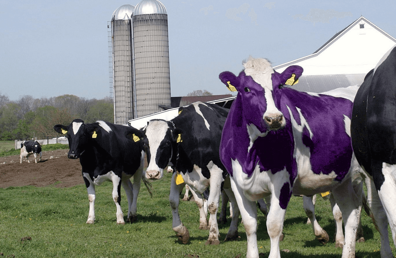 amazon product research - find purple cows