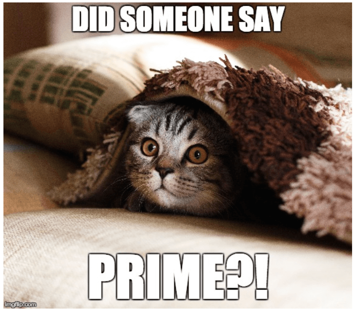 How to Sell on Amazon Prime: Requirements for Becoming a Prime Seller