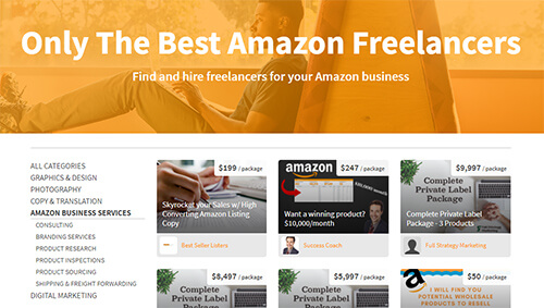 Jungle Market's Amazon Freelancers