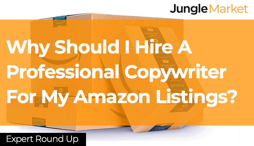 Why Should I Hire A Professional Copywriter For My Amazon Listings? - Expert-Round-Up-Template-Blog-Inside