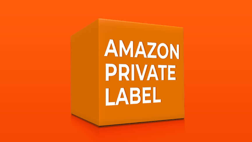 6b0343a15190 Amazon Private Label Brands - What Do They Mean for FBA Sellers ...
