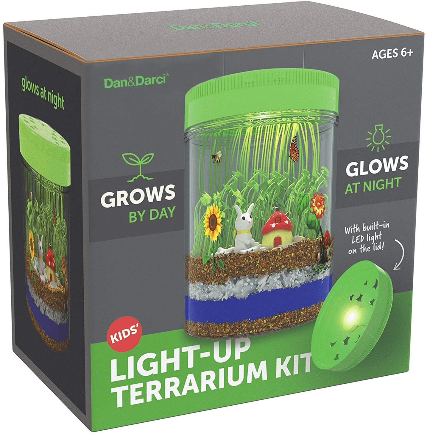 STEM gifts: terrarium