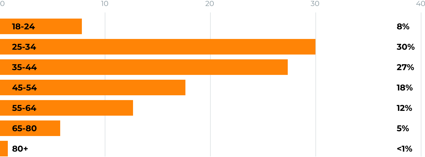 Amazon seller profile: graphic representation of the breakdown of sellers' ages