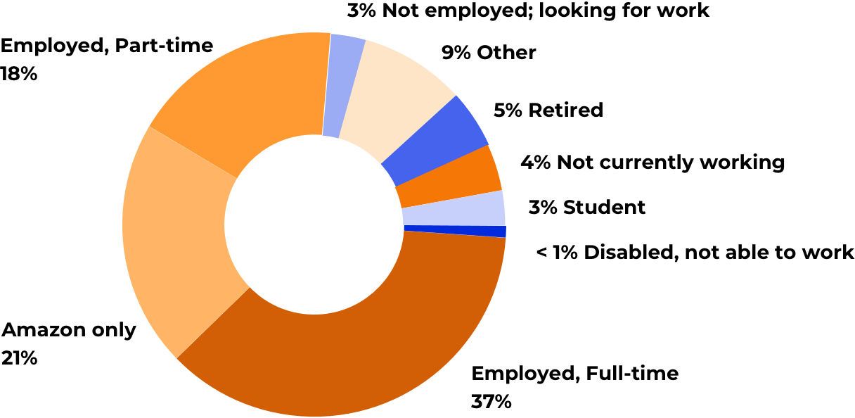 Amazon seller profile: graphic representation of Amazon sellers' employment status