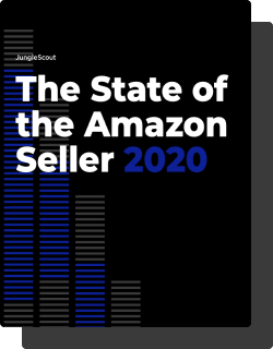 The State of the Amazon Seller 2020